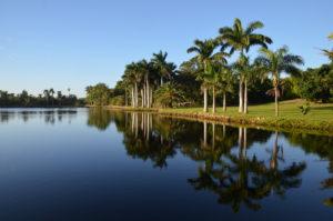 Royal Lake at Montgomery Botanical Center